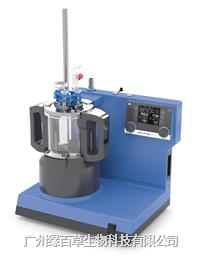 IKA反應釜 1L實驗室反應器 LR 1000控制型