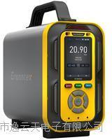 惡臭氣體分析儀 PTM600-OU