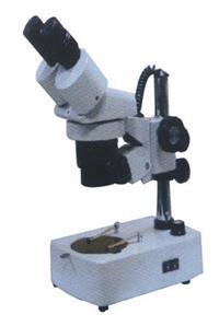 固定倍率实体显微镜