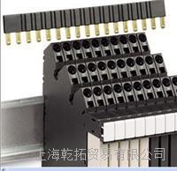 输出型MURR继电器工作电压