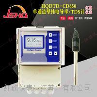 单通道壁挂电导率/TDS计