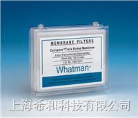 Whatman Cyclopore聚碳酸酯膜和聚酯膜 7060-3704