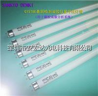 基因檢測凝膠儀紫外線燈管