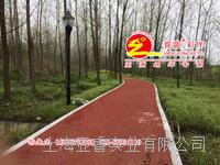 彩色透水混凝土,生態透水地坪,海綿城市建設主打透水路面,上海睿龍廠家,高品質施工透水砼綠道鋪裝 WDO1209