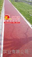 上海睿龍彩色透水混凝土用雙丙聚氨酯密封劑