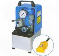 NEX-2DGS,电动泵