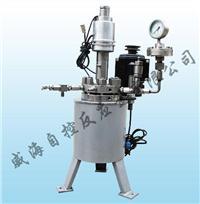 WHF型磁力驅動反應釜 WHF