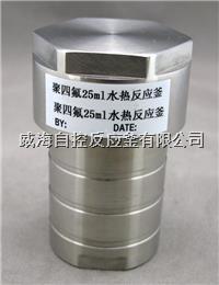 內襯四氟水熱反應釜