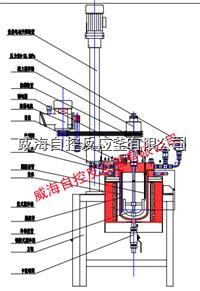 5L/10L釜蓋升降型高壓反應釜