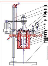 5L实验室用反应釜 WHFS-5L
