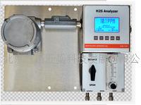 在线微量硫化氢分析仪 H2S-725