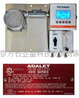 北京硫化氢分析仪配套 H2S-725D