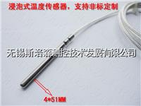 热电阻PT100铂电阻 探头防水耐高低温 PT1000温度传感器 DS18B20