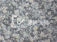 PC-12 (未分化)大鼠肾上腺嗜铬细胞瘤细胞 CRL-1721