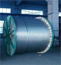 铝绞线及钢芯铝绞线 LJ LGJ