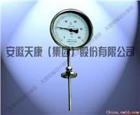 万向型双金属温度计 WSS-484表盘直径Φ100mm