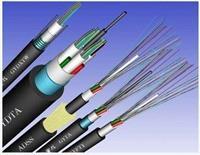 光缆GYDXTW / GYDTS 系列 GYDXTW-24B1-9/125  天康