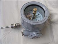 隔爆双金属温度计 WSSX-486B