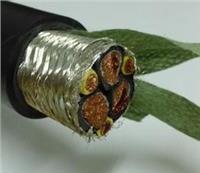 电力电缆,变频电缆 ZR-BPVVPP2