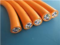 硅橡胶电缆 KGGR0.6/1KV24*2.5硅橡胶电缆
