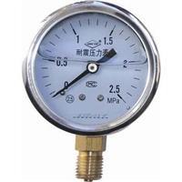 不锈钢压力表 Y-100B-FZ 0-1.6MPa