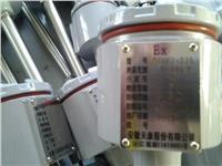 防爆热电阻 WZP2-440PT100