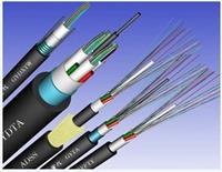 安徽天康洲鸽商标光纤GYTA-4A1B多模光缆厂家 GYTA-4A1B