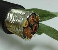 无卤低烟阻燃变频器用电力电缆WDZ-BPYJYP  WDZ-BPYJYP