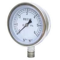不锈钢压力表 YBF-100/YBFN
