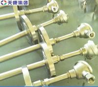 安徽天康铠装防爆热电偶 WRNK2-440