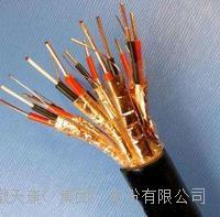 天康阻燃电缆 ZR-DJYVP2-300/500V-1*2*1.5