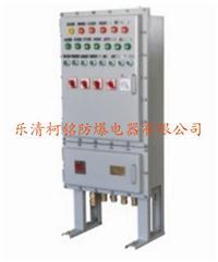 非標防爆配電箱 定做防爆鋼板箱 BXD