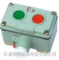 防爆電動葫蘆控制按鈕