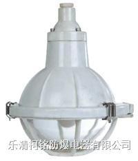 增安型防爆防腐燈 BAD52-e
