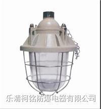 125W隔爆型防爆燈 BCD-125