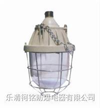 250W防爆燈 BCD-250