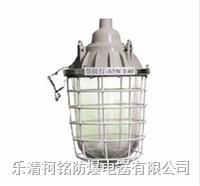 隔爆鑄鋁防爆節能燈 BCD