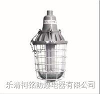 隔爆型防爆節能燈 BCD-J
