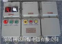 BXM防爆配電箱 BXM(D)81