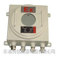 鋼板防爆接線箱廠家 BXJ51