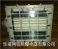 100WLED防爆燈