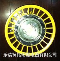 30W大功率LED防爆灯