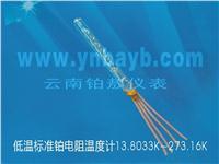低温标准铂电阻温度计 WZPB-11