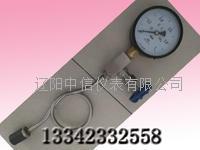 壓力表-帶針型閥的壓力表-隔膜耐振式壓力表 YPTF-100