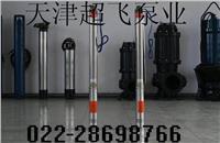 天津热水潜水泵超飞
