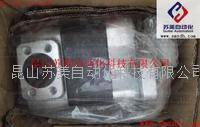 日本KFP3245CFMSS油泵,KFP3245CFMSS齒輪泵 KFP3245CFMSS,KFP4163CFMSS,KFP5171CSMSF506,KFP5171K
