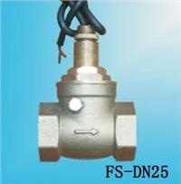 FS-DN25水流開關 FS-DN25