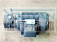 油泵電機組 YBDZ-C20(V3)-CY YBDZ-D20(V3)-CY 油研油泵電機組 YOUYAN油泵電機組  YBDZ-B32(V3)-CY YBDZ-C32(V3)-CY