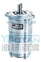 雙聯齒輪油泵 CBWL-E316/310-AF CBWL-E316/310-AL CBWL-E316/310-CF 油研雙聯齒輪油泵 CBWL-E316/310-AF CBWL-E316/310-AL CBWL-E316/310-CF