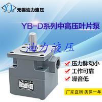YB-D系列中高压叶片泵YBD-32 噪音低 品质优 质保一年 YBD-32